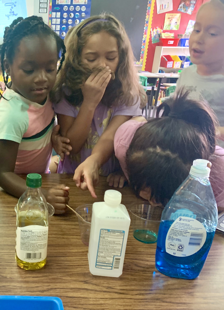 Exploring liquids with our senses!