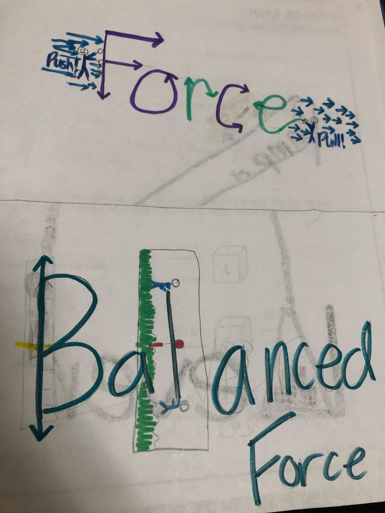 6th grade Science using Visual Vocab Strategy