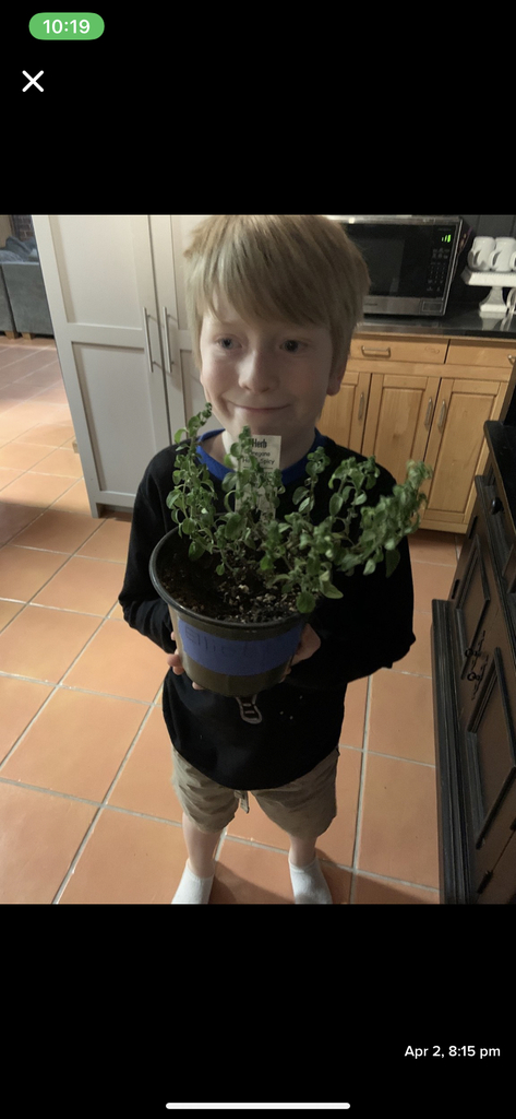 Elliot growing his plant!